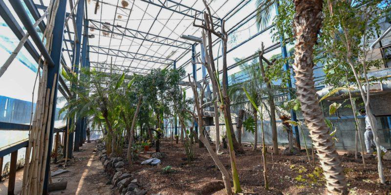 """Avanzan Los Trabajos Para Recuperar """"La Perla"""" Del Jardín Botánico"""