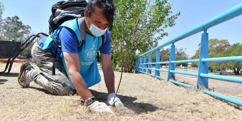 Forestando Futuro: Plantaron árboles En La Isla De Los Patos Y La Costanera