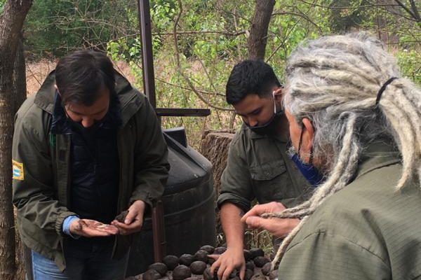 "Arman Miles De ""Bombas De Semillas"" Para Reforestar Las Sierras De Córdoba"