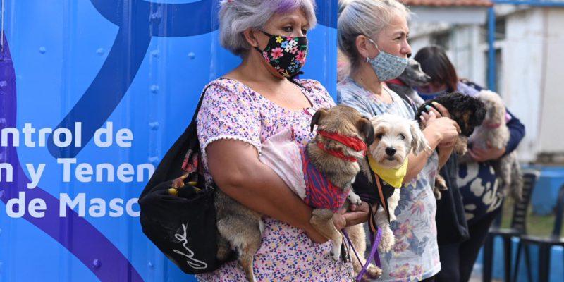 La Municipalidad De Córdoba Pone En Marcha 2 Móviles De Castraciones Gratuitas Para Mascotas Domésticas Y En Situación De Calle