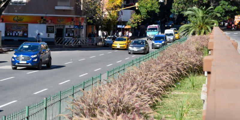 Comenzaron Las Tareas De Puesta En Valor Del Cantero Central De Los Bulevares San Juan Y Arturo Illia