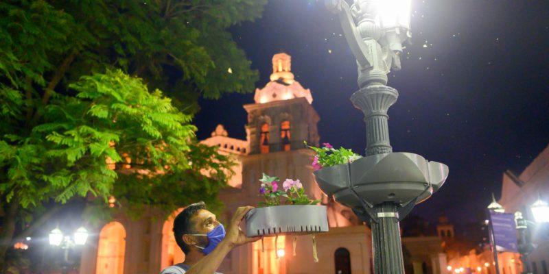Colocan Macetas En Altura Con Sistema De Riego Autónomo En Farolas De La Plaza San Martín