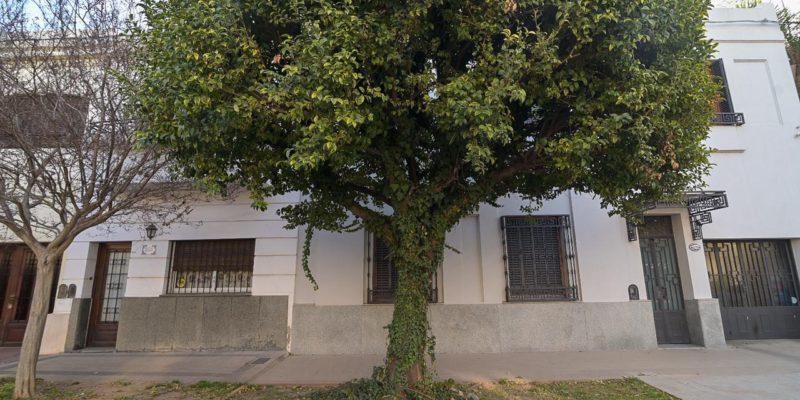 El Municipio Recuerda La Normativa Sobre La Poda Y Extracción De árboles En Vereda