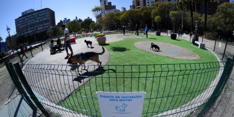 """Con Juegos, Los Perros Se """"divierten"""" En El Primer Canil De La Ciudad"""