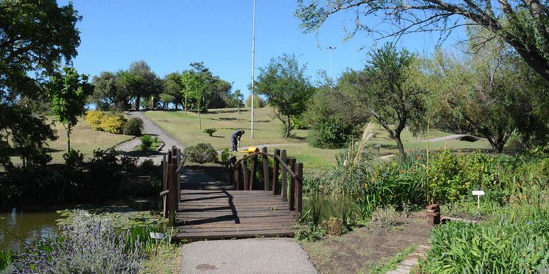 El Jardín Botánico Invita A Celebrar El Día Del Árbol Con Actividades Gratuitas Para Toda La Familia