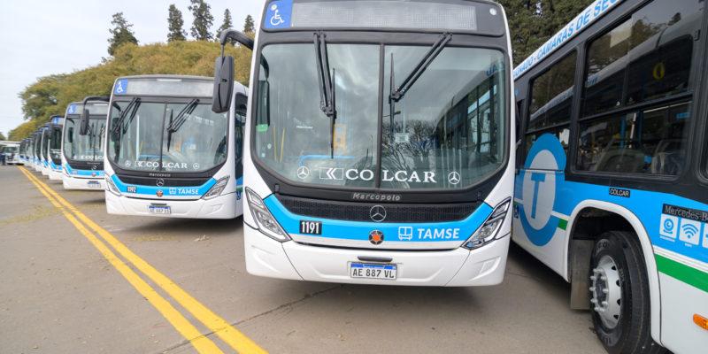 Elecciones: El Domingo El Transporte Urbano Será Gratuito Para Quienes Vayan A Votar